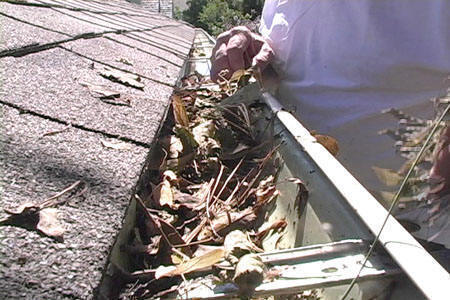 carson city gutter cleaning
